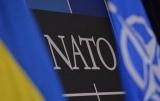 Ученые из Украины будут помогать НАТО обнаружения взрывчатых веществ
